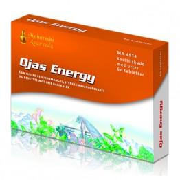 Ojas Energy