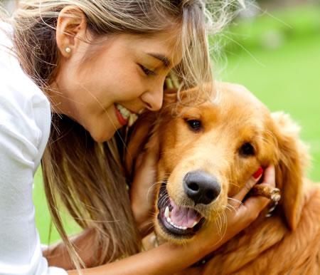 Allergisk mot hund? - bestill Allergard idag!